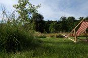 Inseln im Garten: Gemäht für uns und ungemäht für Heuschrecken, Falter & Co.