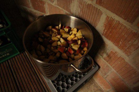 """Ein weiterer Erstversuch: Apfelessig. Soll ja für alles mögliche einsetzbar sein... Aber jetzt muß er erstmal gelingen und hier kühl ruhen und """"weißen Schaum"""" bilden, heißt es im Rezept. Wir rühren jeden Abend um und sind gespannt..."""