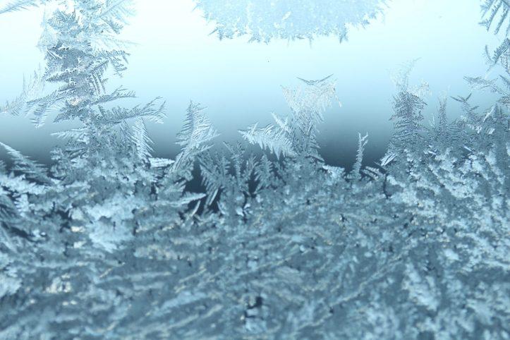 Filigrane Federchen aus Eis auf Glas - als wäre die Schneekönigin persönlich vorbeigekommen und hätte dekoriert.