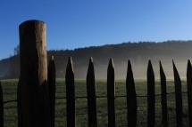 staketenzaun_naturgarten_morgennebel