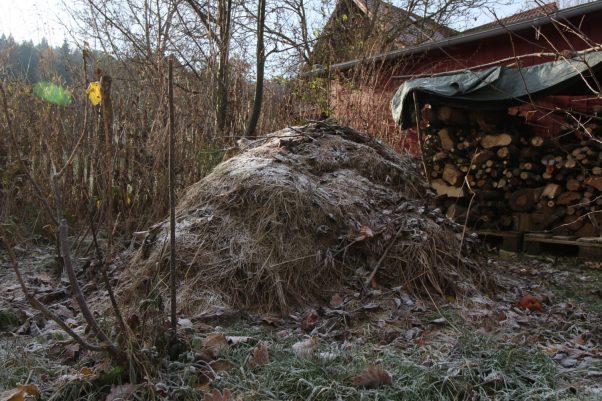 Struktur bietet Nahrungsquellen. Hier noch Schneefrei Grashaufen neben Holzlager, dahinter Himbeergestrüpp - ca. 2-3 qm, die wir nie betreten.